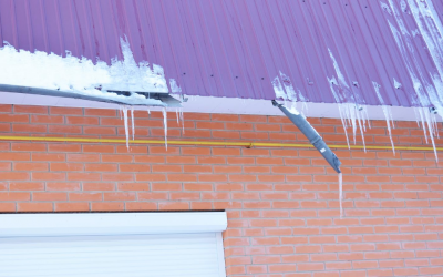 4 Signs of Winter Damage and How to Fix It
