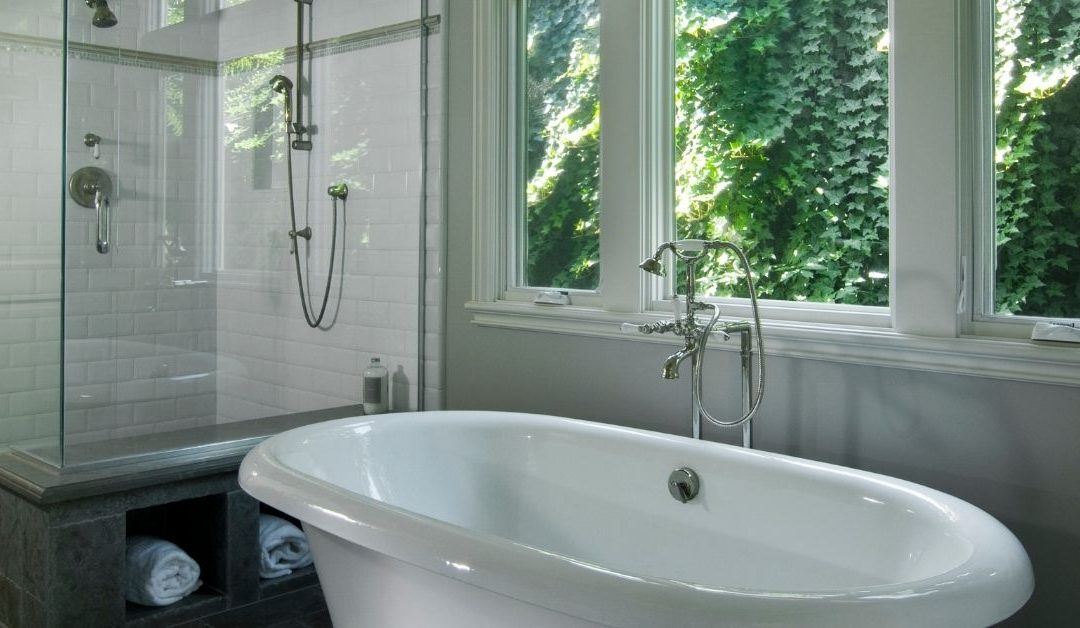 Large Showers vs Traditional Bathtubs